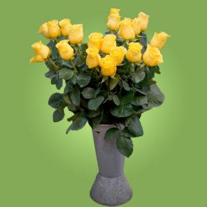 Жёлтые эквадорские розы