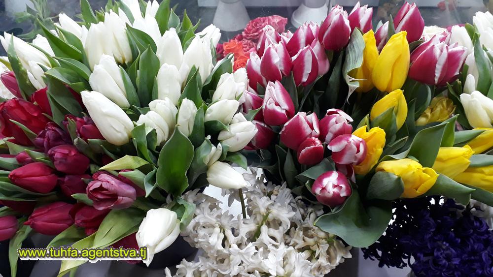Roza.tj - Доставка цветов в г. Душанбе