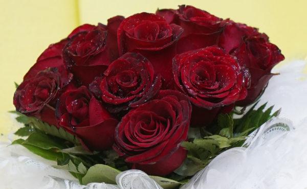 купить розу в Душанбе Таджикистан